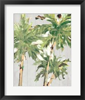 Framed Caribbean Palm Trees