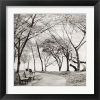 Framed Virginia Park Walk