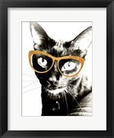 Framed Cool Kat