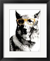 Framed Cool Dog