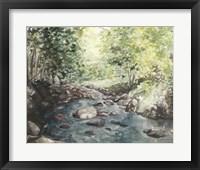 Framed Virginia Woods IV