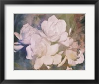 Framed Blush Gardenia Beauty I