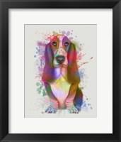 Framed Basset Hound Rainbow Splash