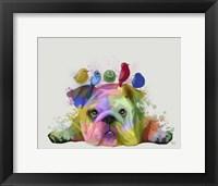 Framed English Bulldog and Birds, Rainbow Splash
