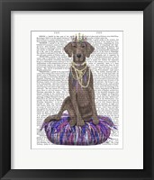 Framed Weimaraner on Purple Cushion