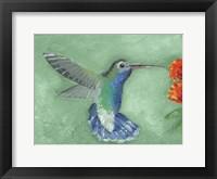 Framed Fresco Hummingbird I