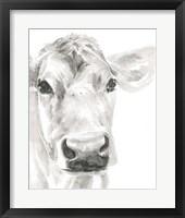 Framed Farm Faces I