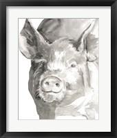 Framed Farm Faces III