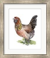 Framed Chicken Dance II