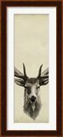 Framed Triptych Elk II