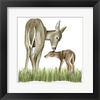 Framed Woodland Babes II