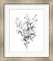 Framed Paynes Grey Botanicals I