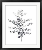 Framed Paynes Grey Botanicals II