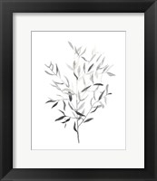 Framed Paynes Grey Botanicals III