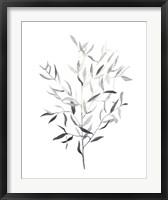 Framed Paynes Grey Botanicals III