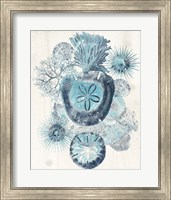 Framed Coastal Melange I