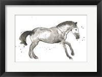 Framed Equine Impressions I