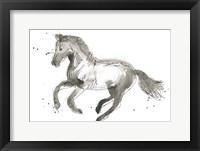Framed Equine Impressions II