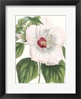 Framed Floral Beauty IV