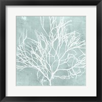 Seaweed on Aqua II Framed Print