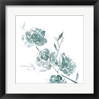 Framed Traces of Flowers II