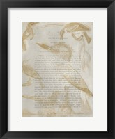 Framed Ornithology Impressions I