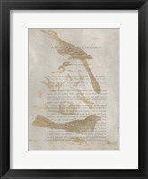 Framed Ornithology Impressions III