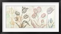 Framed Botaniques Cochin #1 (coleurs)
