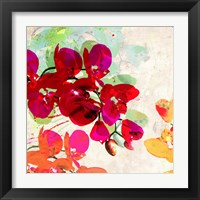 Framed Orchidreams (detail)
