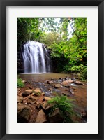 Framed Ellinjaa Falls,  Waterfall Circuit, Queensland, Australia