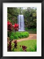 Framed Millaa Millaa Falls, Queensland, Australia