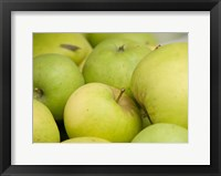 Framed Canada, British Columbia, Cowichan Valley Close-Up Of Green Apples
