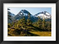 Framed Mount Eccles Near Cordova, Alaska
