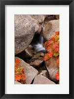 Framed Small Waterfall In The Sierra Nevada Mountains
