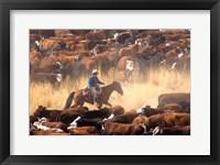 Framed Cowboy Cattle Drive