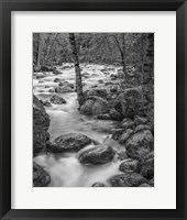 Framed Yosemite Happy Isles, California (BW)