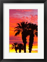Framed Silhouetted Palms At Sunrise