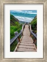 Framed Boardwalk Trail To Sand Dollar Beach