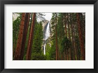 Framed Yosemite Falls Through A Forest