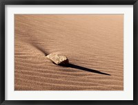 Framed Rock And Ripples On A Dune, Colorado