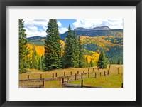 Framed Autumn Colors In The San Juan Mountains, Colorado