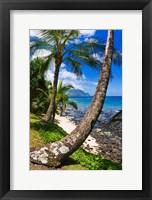Framed Hideaways Beach, Island Of Kauai, Hawaii