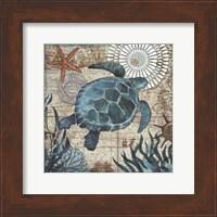 Framed Monterey Bay Turtle
