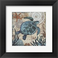 Framed Monterey Bay Turtle