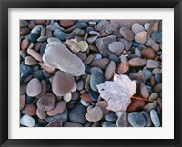 Framed Maple Leaf And Rocks Along The Shore Of Lake Superior