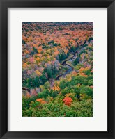 Framed Big Carp River, Porcupine Mountains Wilderness State Park, Michigan