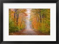 Framed Autumn Road In Schoolcraft County, Michigan