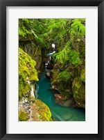 Framed Avalanche Creek, Glacier National Park, Montana