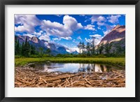 Framed Driftwood And Pond, Saint Mary Lake, Glacier National Park, Montana