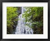 Framed Mingo Falls, North Carolina